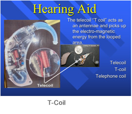 T-Coil1
